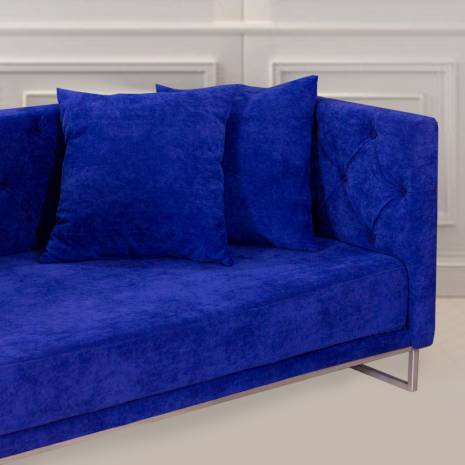 Canapea fixa, Leon