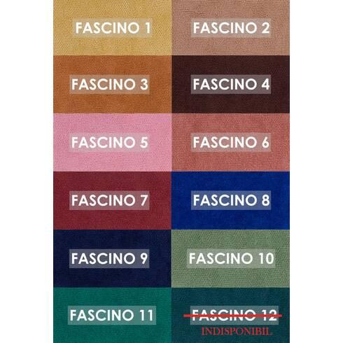 Paletar Fasscino
